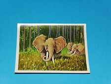 #35 ELEPHANT OSTAFRIKA CHROMO DEUTSCHE KOLONIEN 1930 COLONIE ALLEMANDE AFRIQUE