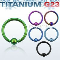 "G23 Solid Titanium Anodized Captive Bead Ring Hoop Earring Septum 14G 5/16"" 3/8"""