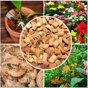 Coconut Husk Coco Chips for Flowers Fruit tree Other Plant 100% Natural Organic