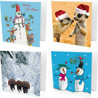 Pack of 10 Quentin Blake Shelter & Crisis Christmas Cards - Snowman Meerkats