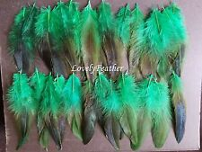 100 Pcs green irridescent coque feathers