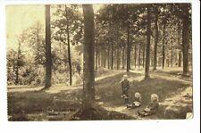 CPA - Carte postale -Belgique - Averbode -Sous Bois -1935 S1818