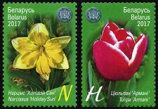 2017 Belarus, flora, flowers, 2 stamps, MNH