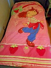 Strawberry Shortcake Berry Sweet Twin Comforter Reversible Striped
