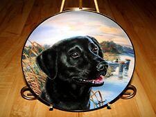 Awaiting His Master'S Call Black Labrador Lab Plate