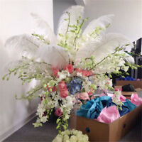 35-40cm Long Quality Ostrich Feather Wedding Party Plume Decor Costume DIY Craft