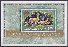 Hungría 1971 exposición mundial de caza MS um SGMS 2591 Gato £ 2.25