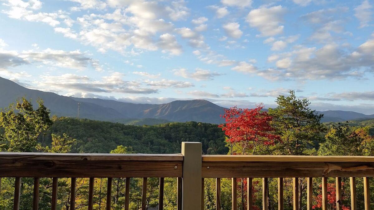 Laurel Views