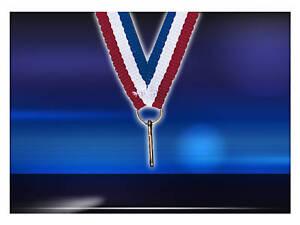 lot de 10 tour du cou porte médaille recompense ruban