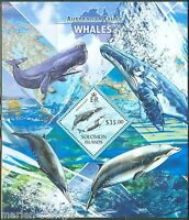 SOLOMON ISLANDS 2013 AUSTRALIAN FAUNA  WHALES SOUVENIR SHEET
