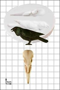 Silicone Mould Raven & Skull | Food Use FPC Sugarcraft FREE UK shipping!