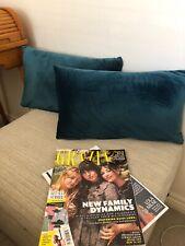 Two Teal Blue Velvet Cushions