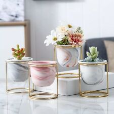 Indoor Home Office Ceramic Marble Flower Decor Plant Pot With Gold Iron Frame