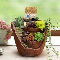 Succulent Flower Basket Planter Plant Sky  Garden Bonsai Pot Green Plant Decor