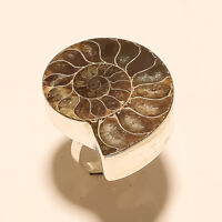 Natural Italian Ammonite Shell Ring 925 Sterling Silver Handmade Fine Jewelry AA