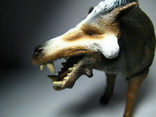 2015 New Collecta Dinosaur Toy / Figure Daeodon