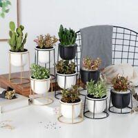 Modern Planter Pot With Iron Shelf Succulent Plant Pot Flowerpot Metal Stand
