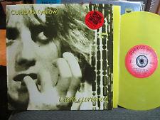 CURIOUS (YELLOW) I am curious Rare AU LP Yellow wax '88 steve kilbey the church!