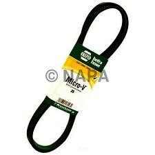 Serpentine Belt-Vortec NAPA/BELTS & HOSE-NBH 25060935HD