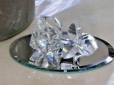 Retired SWAROVSKI SCS Crystal The Rose In the Secret Garden & Box Mirror COA