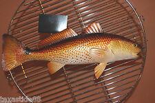 (1)pc, REALISTIC REDFISH REPLICA, FISHERMAN GIFT, REDFISH MOUNT, GAME FISH, #28