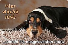 BASSET HOUND - A4 Metall Warnschild Hundeschild SCHILD Türschild - BAS 01 T15
