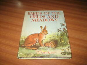 BABIES OF THE FIELDS AND MEADOWS BY MARLA TYRRELL ILLUSTRATED BY EILEEN A SOPER