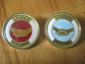 Diploma Qualification Awards Level 2 & 3 Lapel Pin Badge Gilt or Nickel, Diploma