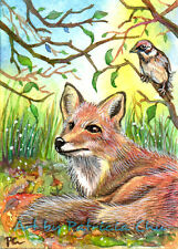 """ACEO LE Art Card Print 2.5x3.5"""" """" Fox Resting With Sparrow """" Art by Patricia"""