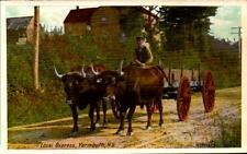Postcard Local Oxpress Yarmouth Nova Scotia Canada Valentine Black