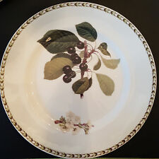 ROSINA-QUEEN'S HOOKERS FRUIT Bone China DINNER PLATE BLK CHERRY, New (R.H.S.)
