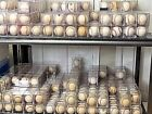 TEN (10) SIGNED AUTOGRAPHED BASEBALL LOT! Yankees, Phillies, Red Sox, Astros etc