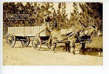 Satsuma Delivery Truck Carriage RPPC Foley AL Rare Deep South Farm Photo 1917