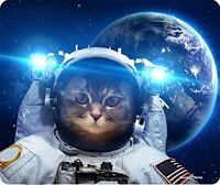 Cat In Space Mouse Pad