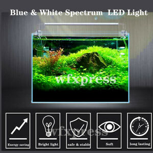 Aquarium LED Light Plant Fish Tank Light Blue&White Spectrum 12 16 20 24 Inch