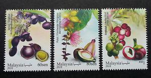 *FREE SHIP Malaysia Medicinal Plants IV 2018 Fruits Vegetables Flower (stamp MNH