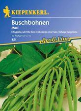 Kiepenkerl - Buschbohnen 121 * Maxi * frühe Bohne ohne Fäden zum * Einfrieren
