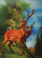 3D Lenticular Poster - Deer in Forest  - 10x14 Print - Wild Animals