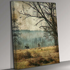 Wandering horse gothic imagery Canvas Wall Art Picture Print