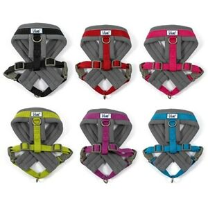 Ancol Padded Dog Puppy Harness Viva Reflective Nylon Stitch All Sizes 6 Colours