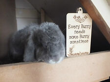 Rabbit Hutch Sign Plaque EVERY BUNNY NEEDS SOME BUNNY SOMETIMES