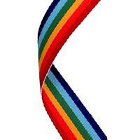 100 X Rainbow Pride médaille rubans Cordons or avec clips 22 mm large