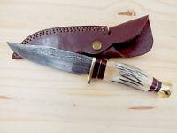 RED DEER® Damascus Steel Hunting Knife Sambar Stag Handle & FULL TANG BLADE