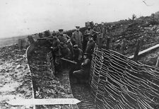 German Military Personnel in Trench - 8x10 World War I Photo WWI