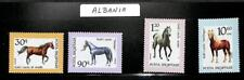 ALBANIA SCOTT #2417-2420 SET OF 4 HORSE STAMPS MNH VF+ 1992