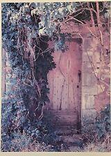 Kleinehanding brigitte, Radolfzell, puerta de jengibre (550d2/11/16)