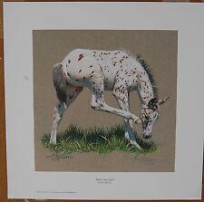 Ann Hanson That's The Spot Limited Edition Fine Art Print Western Animal Foal AP