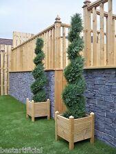 2 Best Artificial 5ft 150cm Topiary Cedar Spiral Outdoor Trees Conifer Garden