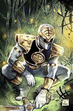 Mighty Morphin Power Rangers Exclusive #45 Spider-Man #1 Todd Virgin Variant