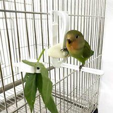 Pet Parrot Birds Food Holder Feeding Fruit Vegtable Clip Feeder Device Pin Clamp